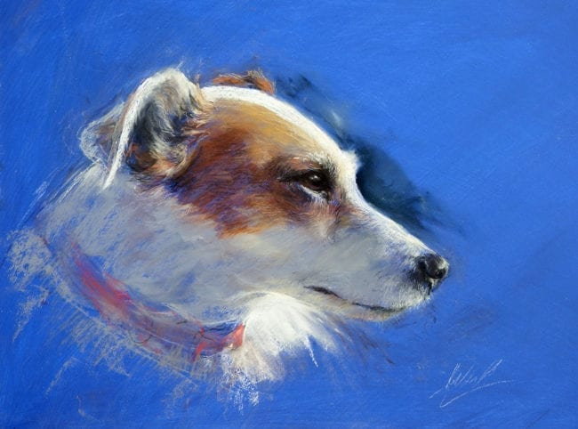 Pongo on Blue, SOLD