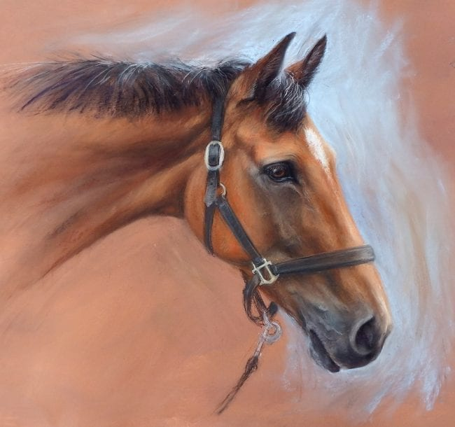 Cooley Master Class, SOLD