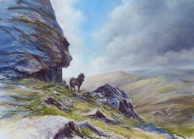 Wild on Dartmoor, £895
