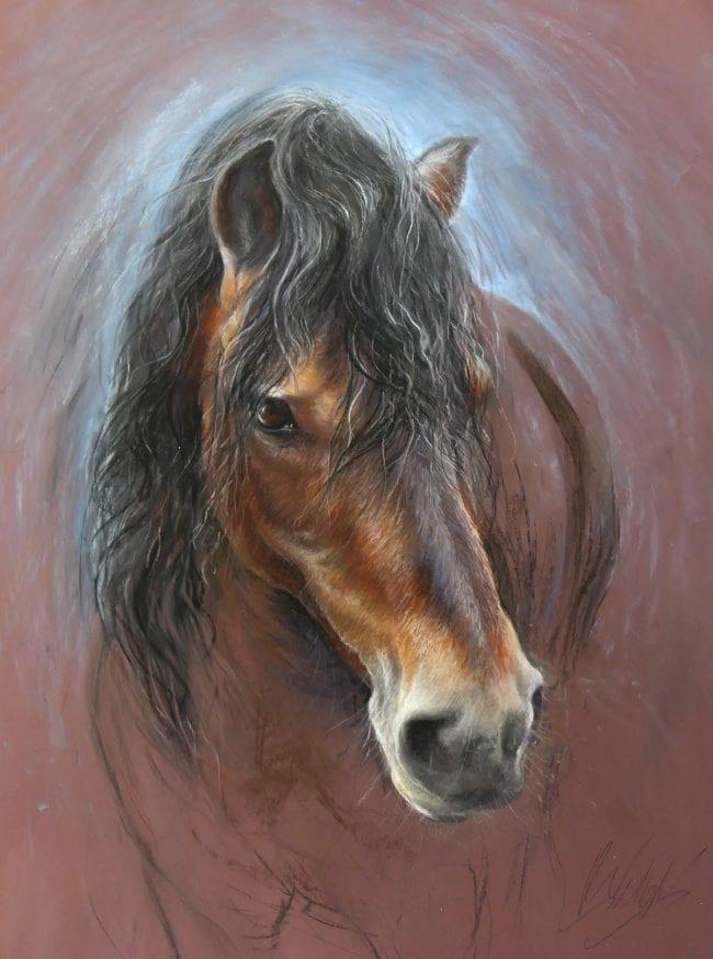 Dartmoor Stallion study, £895