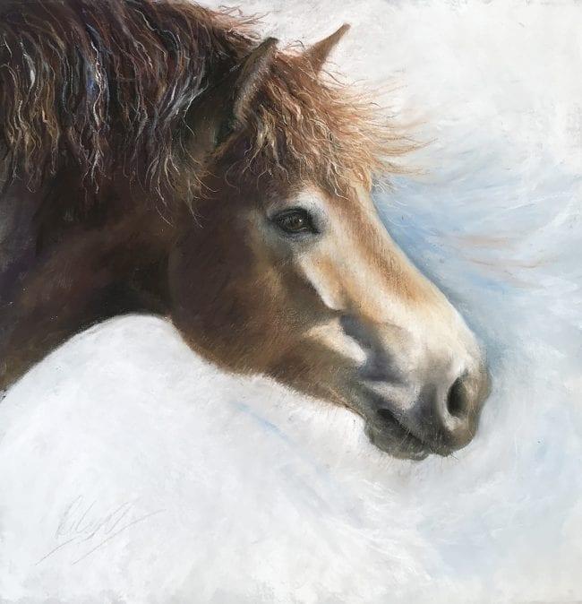 Pony sketch 2, SOLD