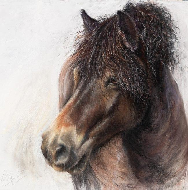 Exmoor Pony Sketch 4, £245